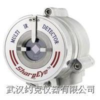 氫氣火焰探測器