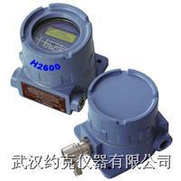 防爆型固定式氢气检漏仪
