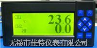 無紙記錄儀(多功能雙回路)