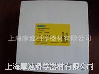 170-3969 Bio-Rad/伯樂 Extra-Thick 特厚印跡濾紙, 19 x 18.5 cm, 30張  1703969