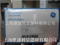 GE Whatman WB120310 FTA微型卡 GE Whatman WB120310 FTA微型卡