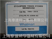 Whatman 7060-2514聚碳酸酯膜25MM 8UM Whatman 7060-2514聚碳酸酯膜25MM 8UM