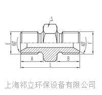 兩端英制外螺紋60°內錐面密封或組合墊密封 1B