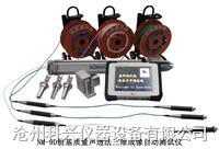 三维成像声波测桩仪 NM-9D型