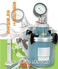 混凝土(双刻线)直读式含气量测定仪 LS-619A型\B型