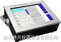 非金属超声检测仪(多通道测桩仪) RS-ST06D(T)型