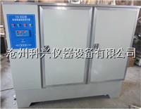 水泥砼标准养护箱 SHBY-60B型