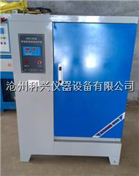 水泥混凝土恒温恒湿标准养护箱 SHBY-40B型