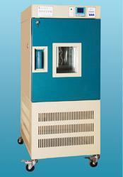 药品稳定性试验箱  YWS-080