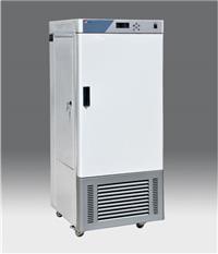 RGX人工气候箱 RGX-250E