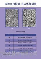 鋼件滲碳淬火回火金相檢驗評級掛圖(GB/T 25744-2010)