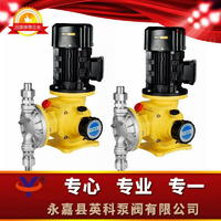 隔膜式计量泵 DJ-Z