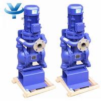 立式电动隔膜泵 L-DBY
