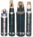 銅芯、鋁芯聚氯乙烯絕緣聚氯乙烯護套電力電纜  VV22電纜ZRVV電纜