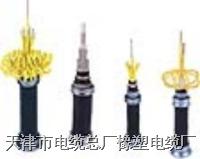 礦用電源電纜 MHYV,MHYVR,MHYVRP