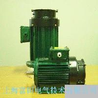 VFG、IAG系列 变频调速电机