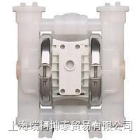"""P2 塑料泵 25 mm (1"""")   P2 塑料泵 25 mm (1"""")"""