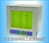 SWP-LCD-R無紙記錄儀 SWP-LCD-R