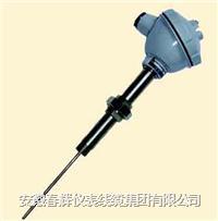 活絡管接頭式一體化熱電偶/熱電阻 WRNB-52  WZPB-52