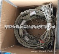 鍋爐爐壁熱電偶 WRNT-11  WRNT2-11