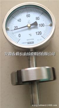 卡箍衛生型雙金屬溫度計 WSS-416