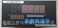 SLRT21A9912PAHPID調節儀 SLRT21A9912PAH