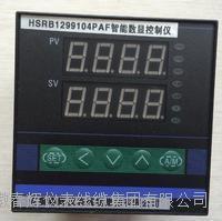 HSRB1299104PAF数显控制仪 HSRB1299104PAF  HSRB1299102PAI  HSRB1299102PAH H