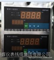 PID温控仪XMT806 XMT806
