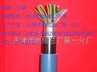 屏蔽通信电缆 ZRC-HYAP是什么电缆 ZRC-HYAP