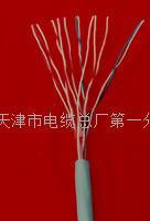 监控传输电缆厂家 PUYVR