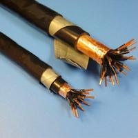 KFVP耐高温控制电缆 KFVP、KFVP2