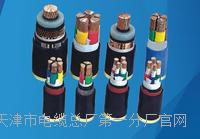 TVR电缆性能指标 TVR电缆性能指标