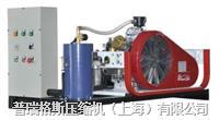 氦气回收机PGH PGH25-0.35