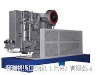 特種氣體壓縮機 PGWT