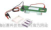 君意JY-SPAT水平电泳槽|伯乐进口品质|全新设计|上海现货