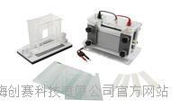 君意:JY-SCZ8垂直电泳槽 伯乐进口品质 全新设计 上海现货 JY-SCZ8