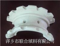 陶瓷異鞍環