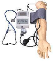 手臂模型|上等手臂血壓測量訓練模型 KAH/S7