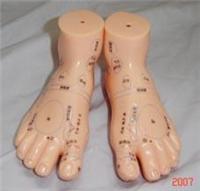 足部保健反射區模型(按摩足模型13CM) H030