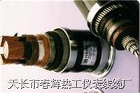 變頻電纜 BRYJVP12R ZRBPYJVP12R BPYJVTP2