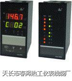 SWP-LED十六路智能巡檢控制儀 SWP-LED