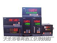 SWP-LED交流/直流電工表