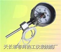 電接點雙金屬溫度計 WSSX-411 WSSX-484