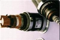 變頻電纜 BRYJVP12R-TK