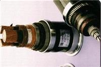 變頻器電力電纜 BPVVP