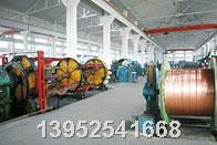 大量供應船用電力電纜CJPJ90/SC/NSC  CJPF/SC