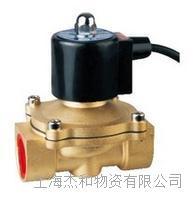 2WS400-40、2WS500-50防水电磁阀