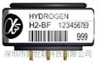 氢气必威H2-BF
