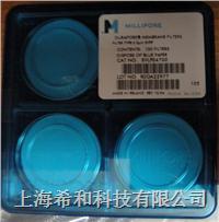 DVPP04700聚偏二氟乙烯,0.65um,孔徑,47mm直徑 DVPP04700