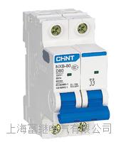NXB-80小型断路器 NXB-80/2P